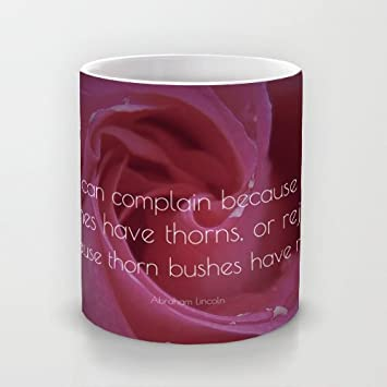 Coffee Mugs Abraham Lincoln Quote We Can Complain Because Rose