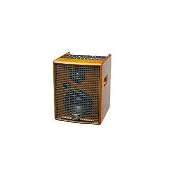 schertler Jam 100 Wood – acabado madera natural – Amplificador Acústica 100 Watts