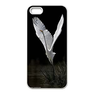 Yo-Lin case IKAI0447861Ballet And Swan For Apple Iphone 5 5S Cases