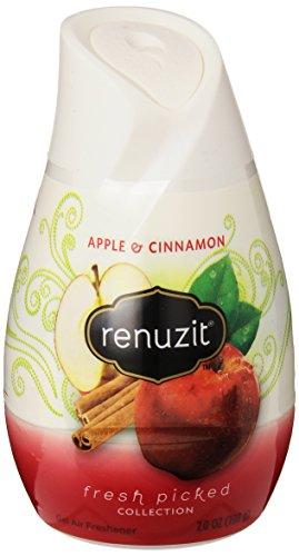 Dial Renuzit Solid Adjustable Freshener