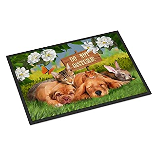 Caroline's Treasures PTW2048MAT Golden Retriever and Sharpei Do Not Disturb Indoor or Outdoor Mat 18x27, 18H X 27W, Multicolor