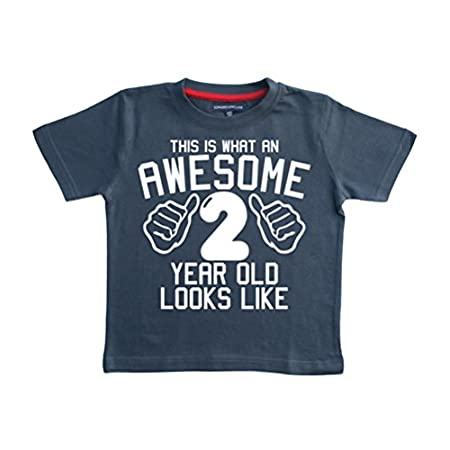 Edward Sinclair This What an Awesome 2 Year Old Looks Like Navy Boys 2nd Birthday T-Shirt in Size 2-3 Years with A White Print 41hP40isR9L