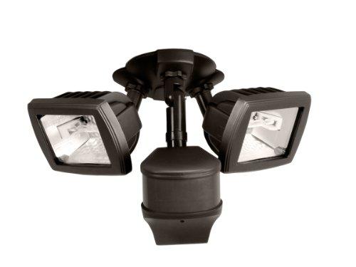 Regent Outdoor Flood Lights - 9