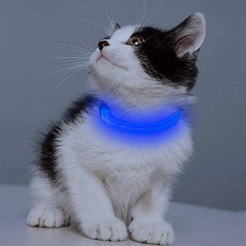 Clan_X LED Cat Collar - Glow in The Dark Dog Collar USB Rechargeable Light Up Puppy Collars for Cats and Dogs Night Walking & Camping (Extra Small, Blue)