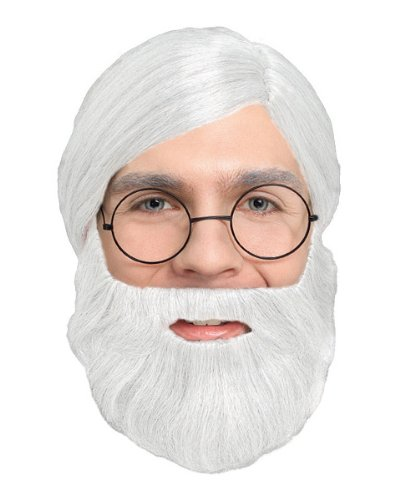 2047 (White) Character Costume Beard (Adult Book Character Costumes)