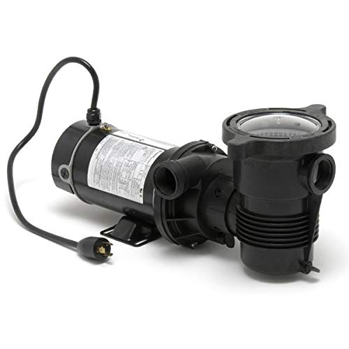 Pentair 347991 OptiFlo Horizontal Discharge Aboveground Pool Pump with 2 Speed Motor and Standard Plug, 1 HP by Pentair