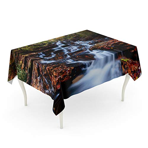 Tarolo Rectangle Tablecloth 60 x 90 Inch Trail Waterfall Sunset in The Fall Colors North Georgia USA Hiking Appalachian Landscape Helen Table Cloth