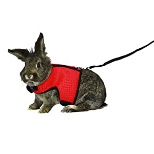 ASOCEA Adjustable Soft Harness with Stretchy Leash for Bunny Cat