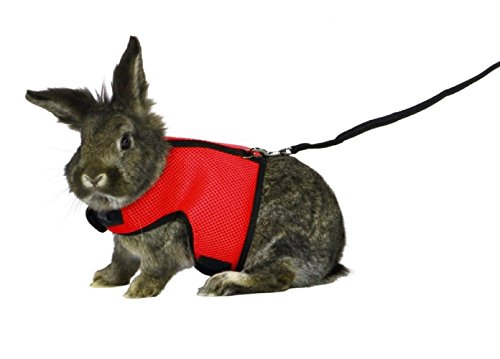 ASOCEA Adjustable Soft Harness with Stretchy Leash for Bunny Cat (Red)