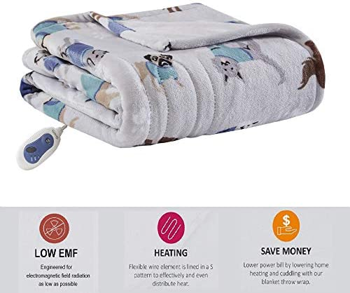 Beautyrest Plush Electric Blanket Throw For Cold Weather Multi-Level Heat Settings Controller Queen Ivory Secure Comfort Zero Radiation Technology and Auto Shut Off Safety