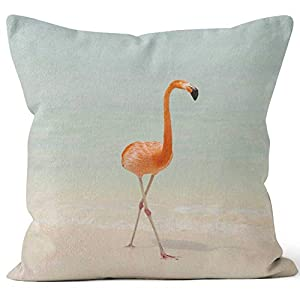 41hQCgd5cSL._SS300_ 100+ Coastal Throw Pillows & Beach Throw Pillows