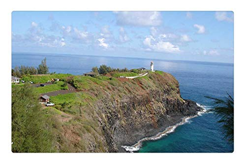 Kilauea Point - Tree26 Indoor Floor Rug/Mat (23.6 x 15.7 Inch) - Penninsula Cliff Kilauea Point Light House Ocean