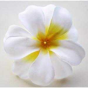 "(12) White Hawaiian Plumeria Frangipani Silk Flower Heads - 3"" - Artificial Flowers Head Fabric Floral Supplies Wholesale Lot for Wedding Flowers Accessories Make Bridal Hair Clips Headbands Dress 3"