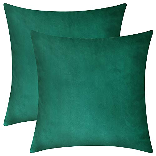 Rythome Set of 2 Comfortable Throw Pillow Cover for Bedding, Decorative Accent Cushion Sham Case for Couch Sofa, Soft Solid Velvet with Zipper Hidden - 14