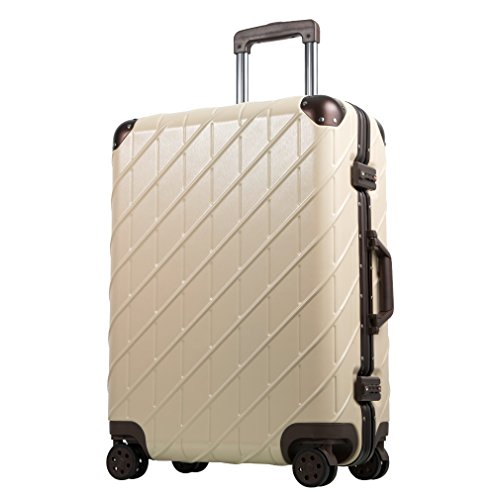 Besteamer Hardside Spinner Luggage Travel Carry-on Expandable Luggage Suit, Lightweight Spinner Trolley Suitcases (24'') by Besteamer