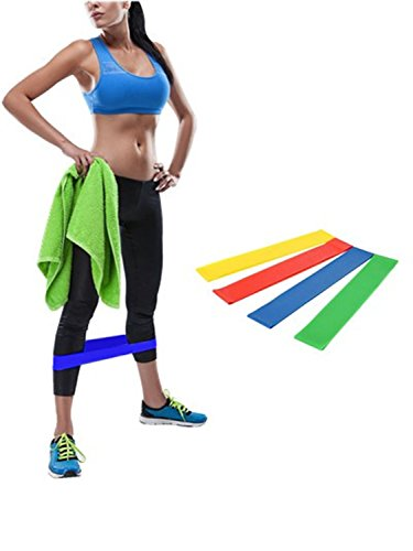 Birth Kit (Resistance Loop Exercise Bands, Backever Set of 4 Stretch Workout Bands Kit with Carry Bag for Workout & Physical Therapy Pilates Yoga Rehab Strength Training (Set of 4))