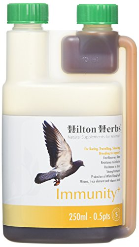 Hilton Herbs 27052 Immunity Plus Bird Food Formula, 0.5 pint -