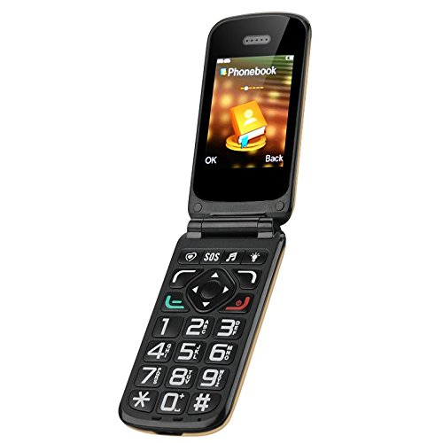 Loud Cell Phone (VKWorld Z2 Seniors Mobile Phone - Loud Speaker, Large Keys, Intelligent Speak Function, Dual SIM, Camera, Micro SD Slot)