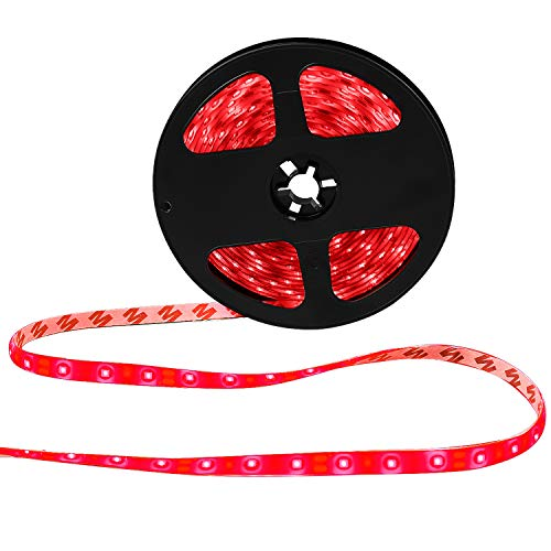 XKTTSUEERCRR Waterproof Red LED 3528 SMD 300LED 5M Flexible Light Strip 12V 2A 24W 60LED/M ()