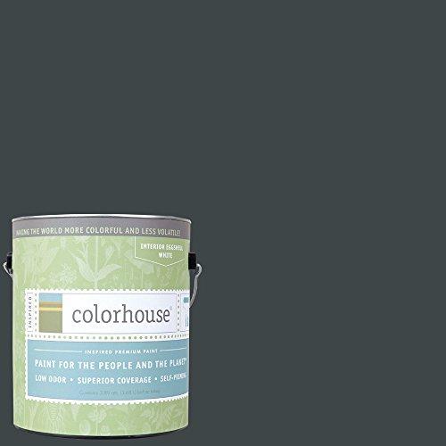 Inspired Eggshell Interior Paint, Metal .06,