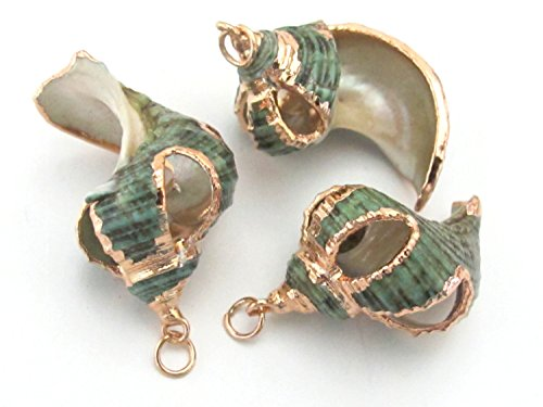 - Gorgeous Rose Gold edged cut green turbo spiral shell pendant - 1 piece - SP028