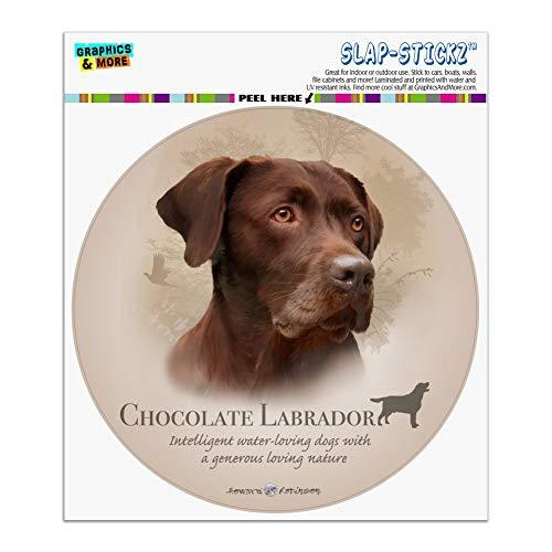Labrador Sticker Chocolate (Graphics and More Chocolate Lab Labrador Dog Breed Automotive Car Window Locker Circle Bumper Sticker)