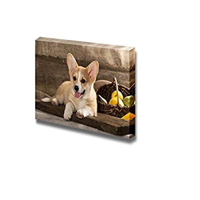 Canvas Prints Wall Art - Welsh Corgi Dog Breed - 24