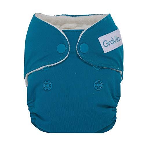 GroVia Newborn All in One Snap Reusable Cloth Diaper (AIO) (Abalone)