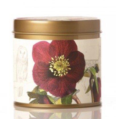Rosy Rings Signature Tin Candle (Oak Moss & Myrrh)
