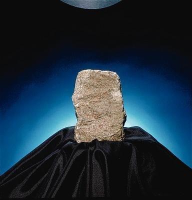 470026-086 – Limestone (Encrinal), Student Specimens – Ward'sï¾ Limestone (Encrinal) – Pack of 10