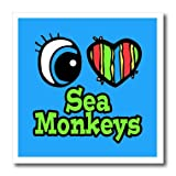 3dRose HT_106498_1 Bright Eye Heart I Love Sea Monkeys-Iron on Heat Transfer for Material, 8 by 8-Inch, White