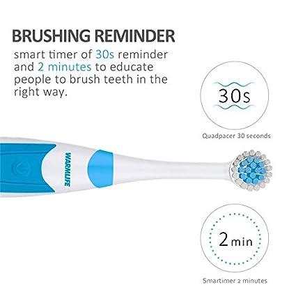 A267-W Cuidado bucal recargable por ultrasonidos con cepillo de dientes  eléctrico y USB 58574e8a274e