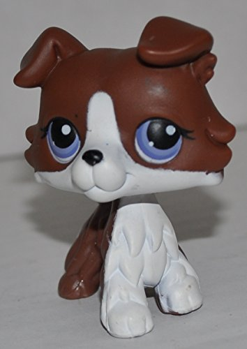 Pet Shop Littlest Loose Figure (Collie #014 (Puzzle) (Brown, Purple Eyes) - Littlest Pet Shop (Retired) Collector Toy - LPS Collectible Replacement Single Figure - Loose (OOP Out of Package & Print))