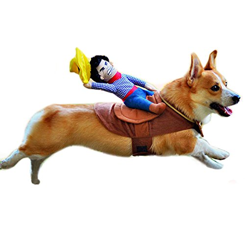 Alfie Pet - Tony The Cowboy for Party Halloween Special Events Costume - Size: M