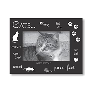 Sixtrees USA Cat Wood Expression 4 by 6-Inch Frame, Black/Silver