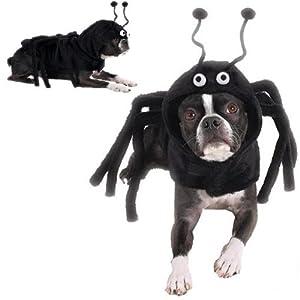 dog costume spidey paws dog spider halloween costume xs