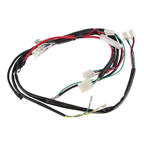 Gazechimp Wiring Harness Loom For Bike ATV Electric Start Engine Quad 50 90 110cc 125c: