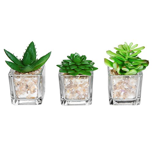 (Small Glass Cube Artificial Plant Modern Home Decor/Faux Succulent Planter Pots, Set of 3 (Assortment 1))