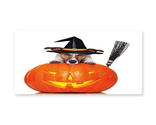 Lunarable Halloween Wall Art, Witch Dog with a Broomstick on Large Pumpkin Fun Humorous Hilarious Animal Print, Gloss Aluminium Modern Metal Artwork for Wall Decor, 23.5 W X 11.6 L (Halloween Themed Hot Dogs)