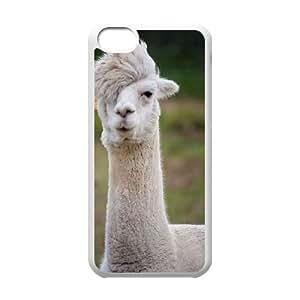 Clzpg New Design Iphone 5C Case - Alpaca diy plastic case