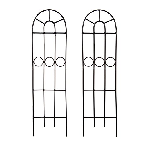 Hosley Set of 2 Classic Iron Trellis 27 Inch High. Ideal Gift for Wedding or Party and Use Next to Structures Home or Office or in Planters for Growing Floral Plants Vines and Vegetables O4 -