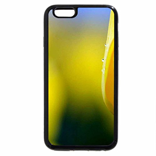 iPhone 6S / iPhone 6 Case (Black) Yellow for gayatri23119_ My Innocent Sister