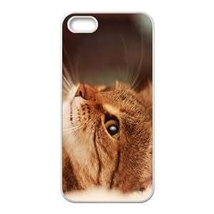 Case For Iphone 4/4S Cover , Cute Cat Paw Closeup Case For Iphone 4/4S Cover , Stevebrown5v White