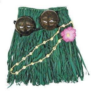 Hawaiian Grass Skirt Set Coconut Bra Top Green Adult (Hawaiian Coconut Shell)