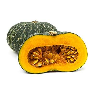 Puerto Rican Pumpkin/Calabaza Seeds - Organic, Open pollinated, Heirloom (1 Packet 10 Seeds) by AchmadAnam : Garden & Outdoor