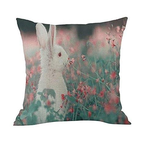 Amazon.com: Valentines Day Pillow Covers Cajas De Amor ...