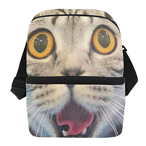 Lunch Bag 3D Funny Cat Blurred Reusable Cooler Bag Adult Leakproof Thermos Organizer Zipper Tote Bags for Grocery
