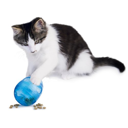 PetSafe Egg-Cersizer Interactive Toy and Meal Dispenser, Use with Food or Treats - PTY00-13747