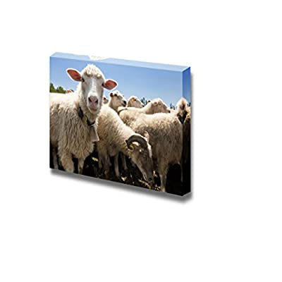 Grand Expert Craftsmanship, Herd of Sheep on a Livestock Farm Wall Decor, Crafted to Perfection
