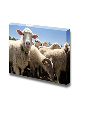Herd of Sheep on a Livestock Farm Wall Decor